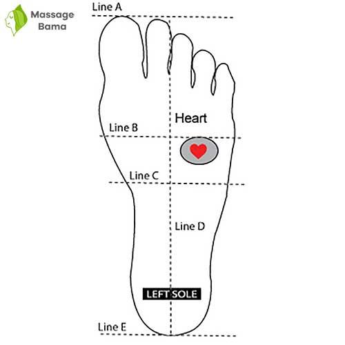 ماساژ نقطه ی فشاری قلب